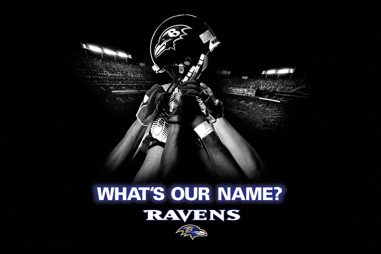 Baltimore Ravens desktop image Baltimore Ravens wallpapers 1440x960