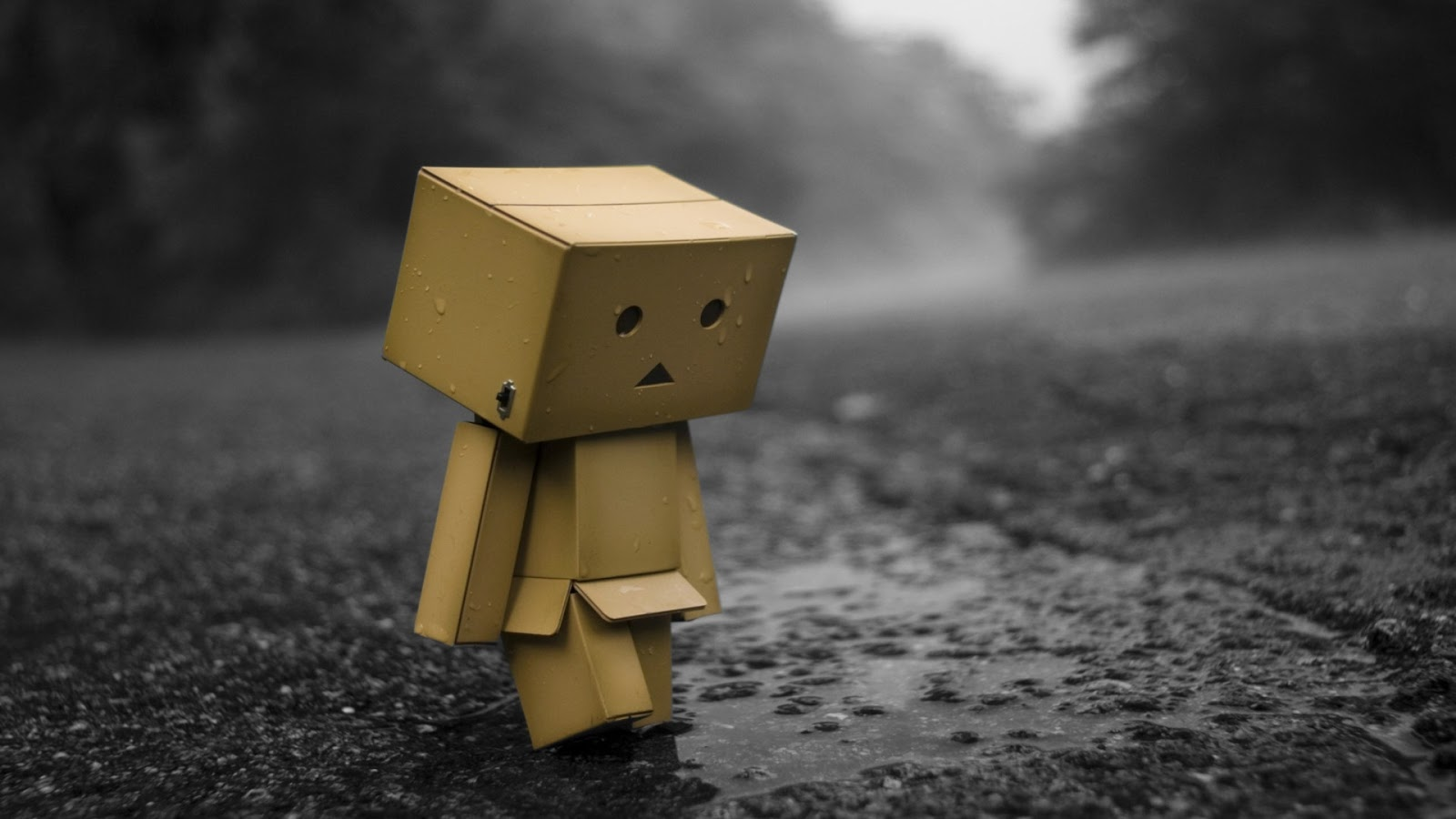 Alone sad Danbo 1600x900
