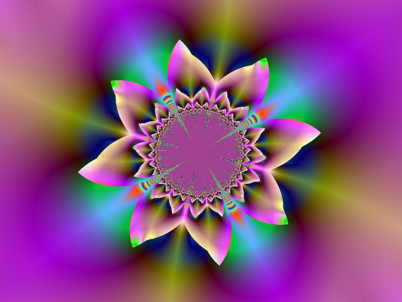 Free Colorful Flower Wallpaper Downloads: Widescreen Desktop Wallpaper Abstract Flower