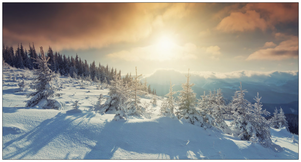 Warm Winter Sunrise wallpaper   ForWallpapercom 969x521