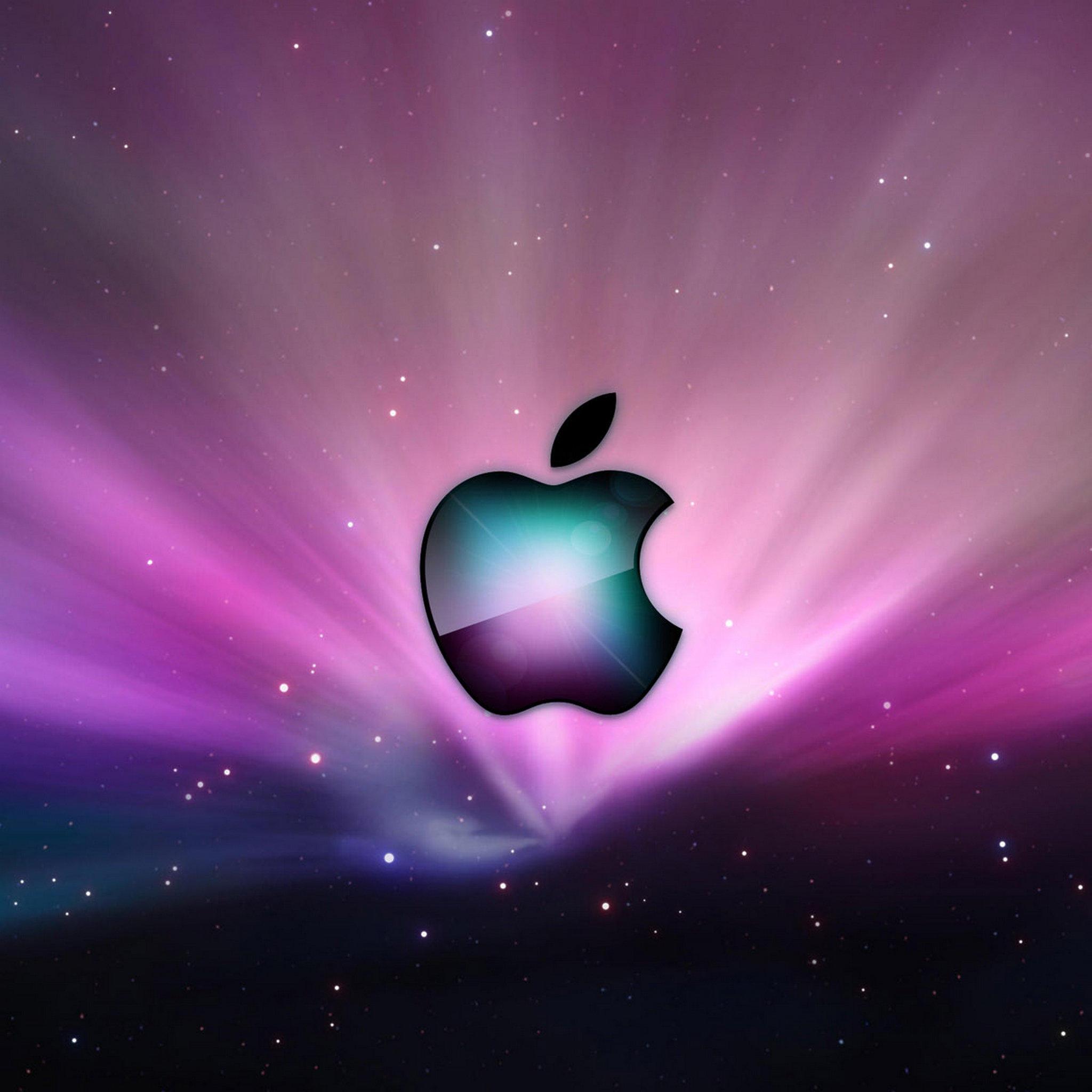 Wallpapers Apple LOGO 054   Apple New iPad iPad 3 iPad 4 Wallpapers 2048x2048