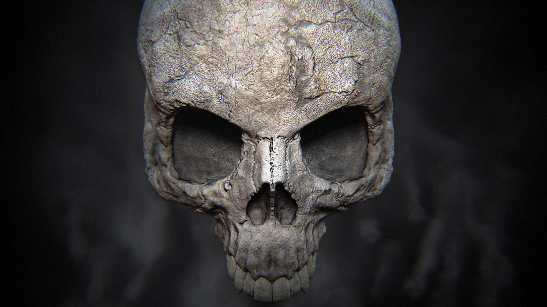 Skull Wallpaper Wide Desktop 3412501u Yoanu 5760x3240