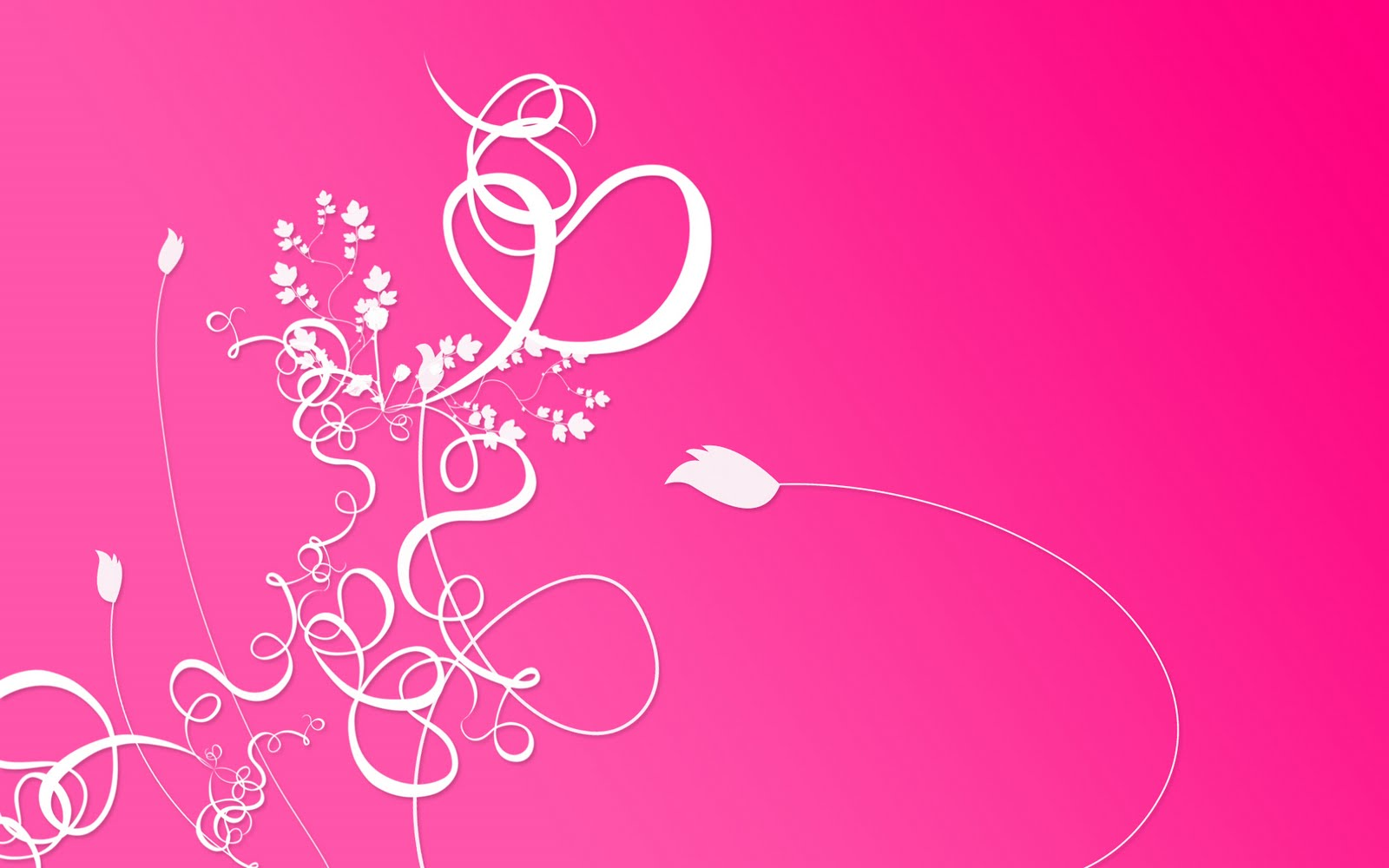 Pink White Floral HD Wallpaper here you can see Abstract Pink White 1600x1000
