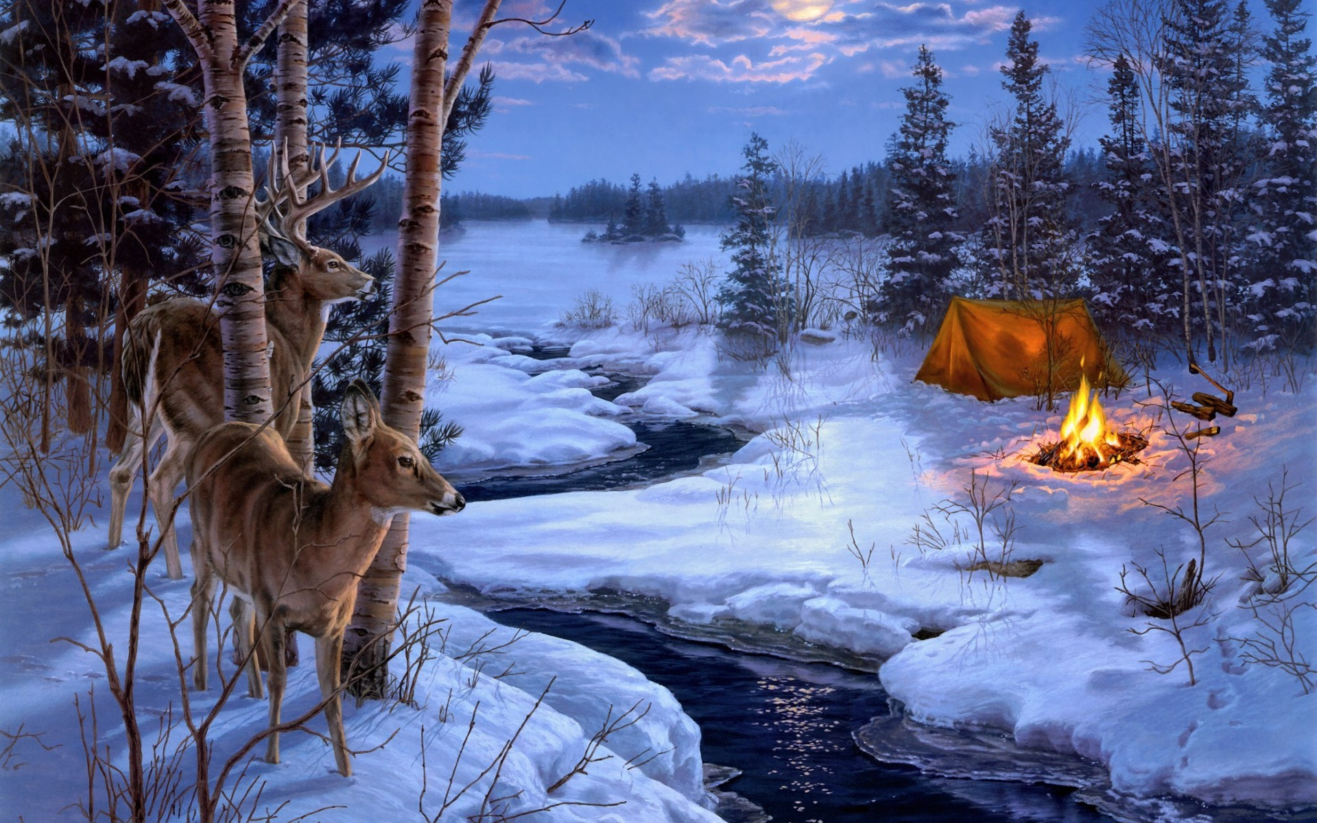 Deer In Winter Wallpaper Deer wallpaper background 1920x1200