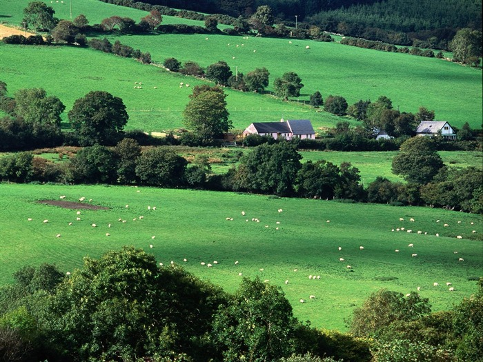 World of Ireland Landschaft Wallpapers 20   Wallpaper Vorschau 700x525