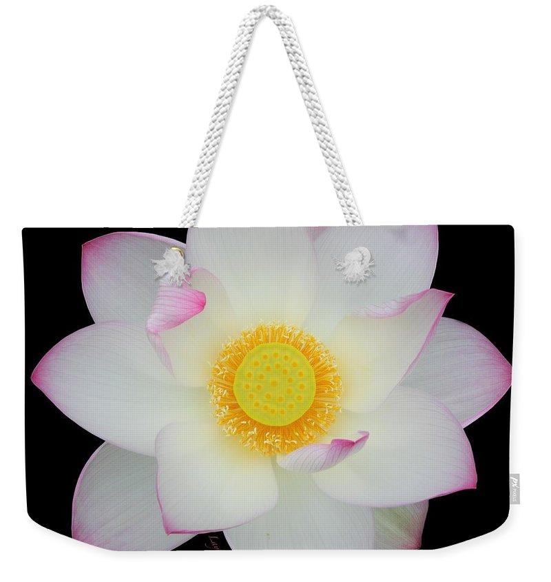Pink Tipped White Lotus Transparent Background Weekender Tote Bag 800x845