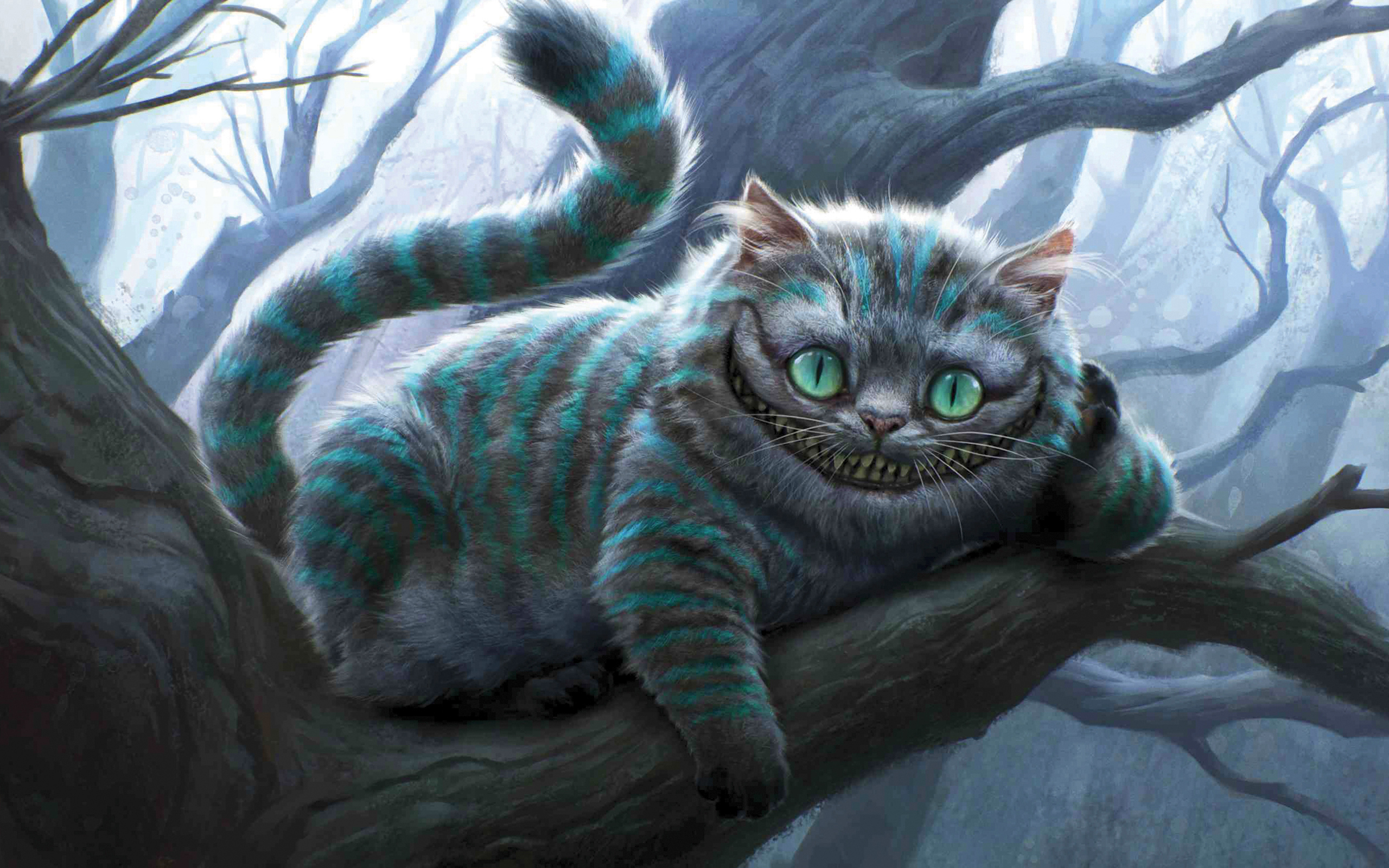 Cheshire Cat Wallpapers HD Wallpapers 2560x1600