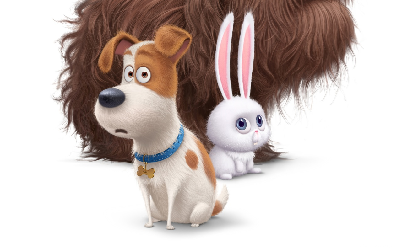 The Secret Life of Pets Movie 2016 HD Wallpaper   iHD Wallpapers 1280x800