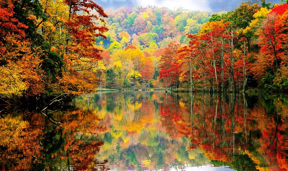 America the Beautiful in Autumn Peak Fall Foliage Dates for 48 States 956x567