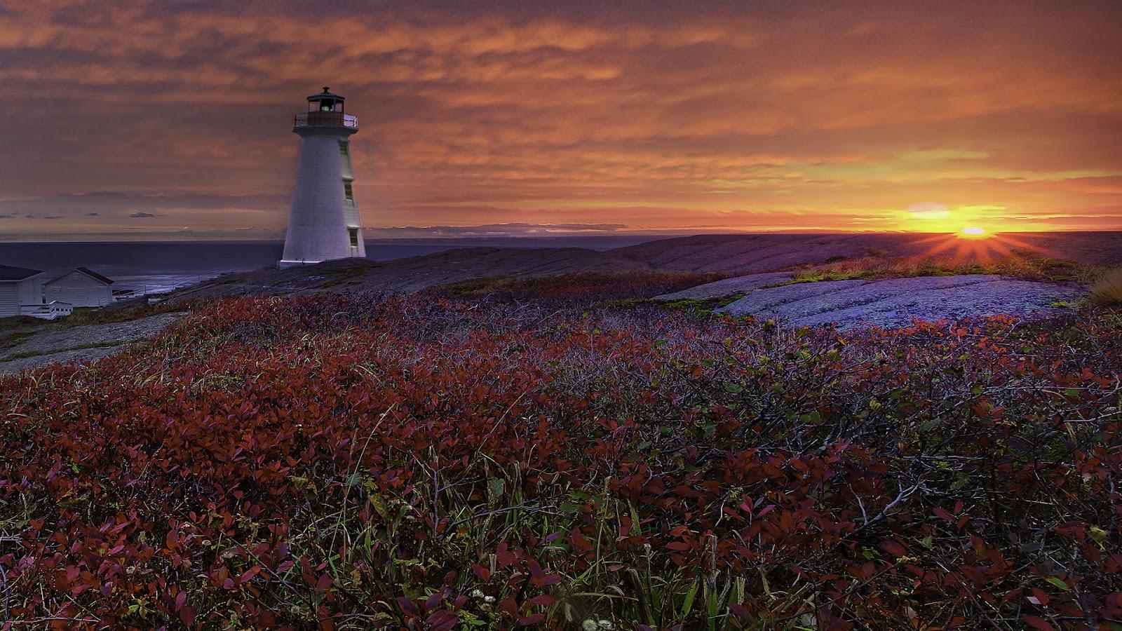 46] Newfoundland Lighthouse Wallpaper on WallpaperSafari 1600x900
