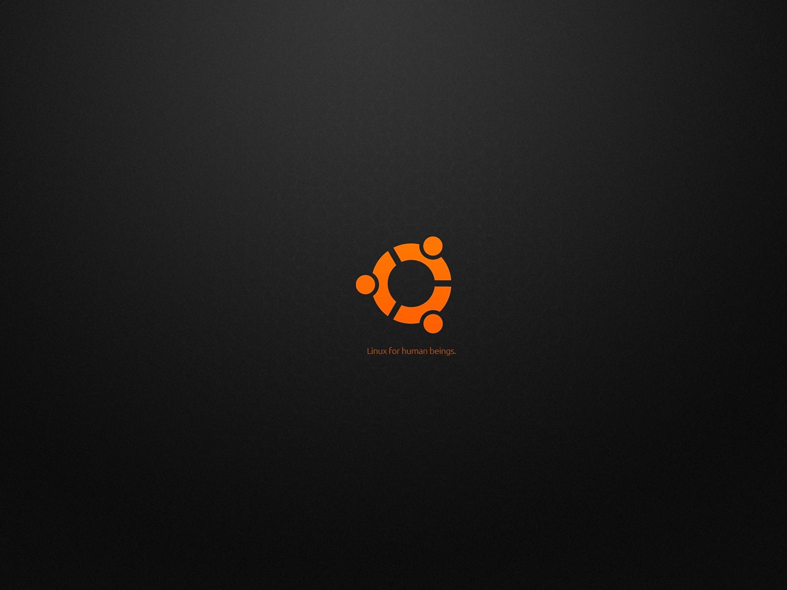 Install Netflix Ubuntu 1204 1210 HowTo 1600x1200