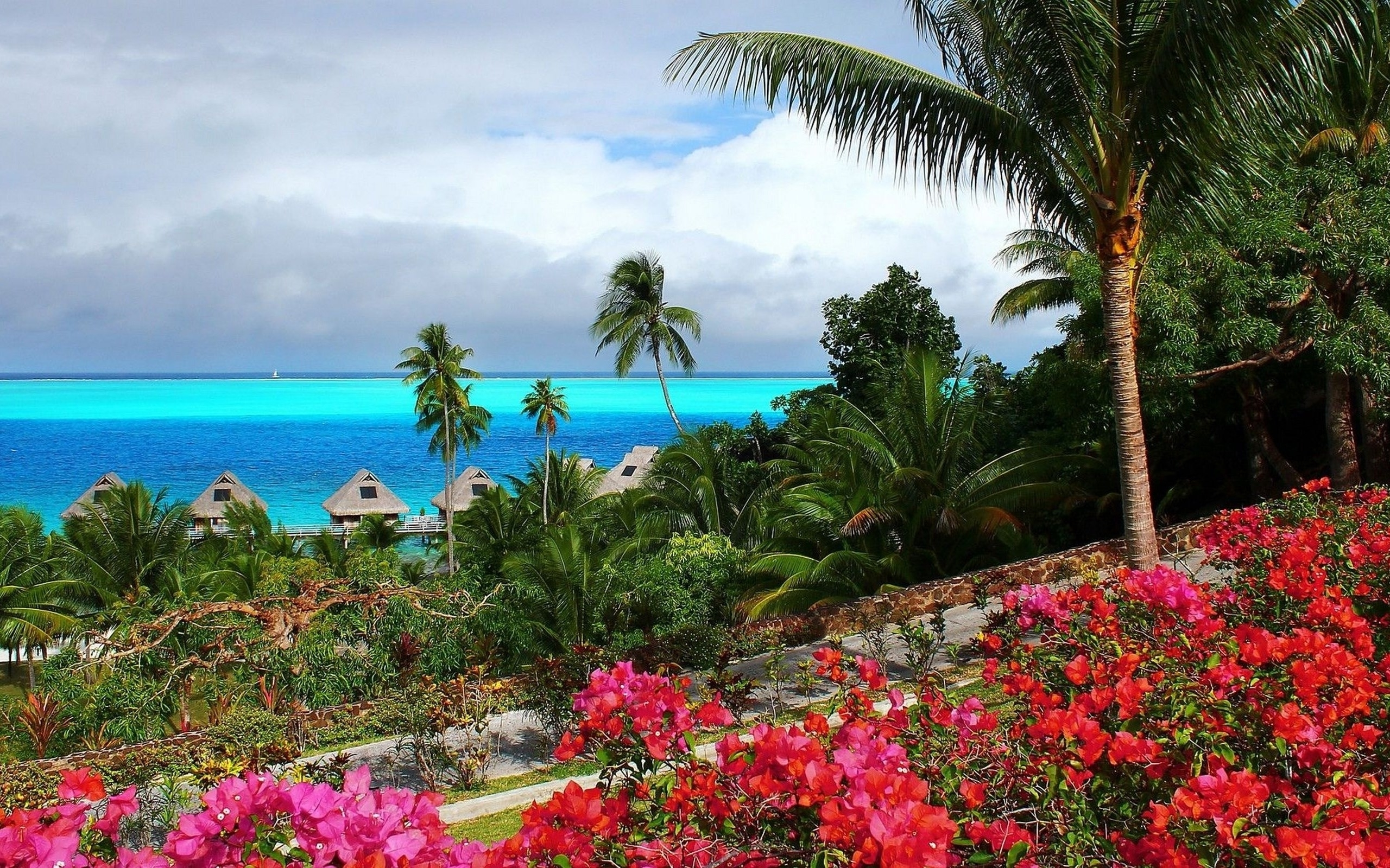 Tropical island wallpaper   1308772 2560x1600