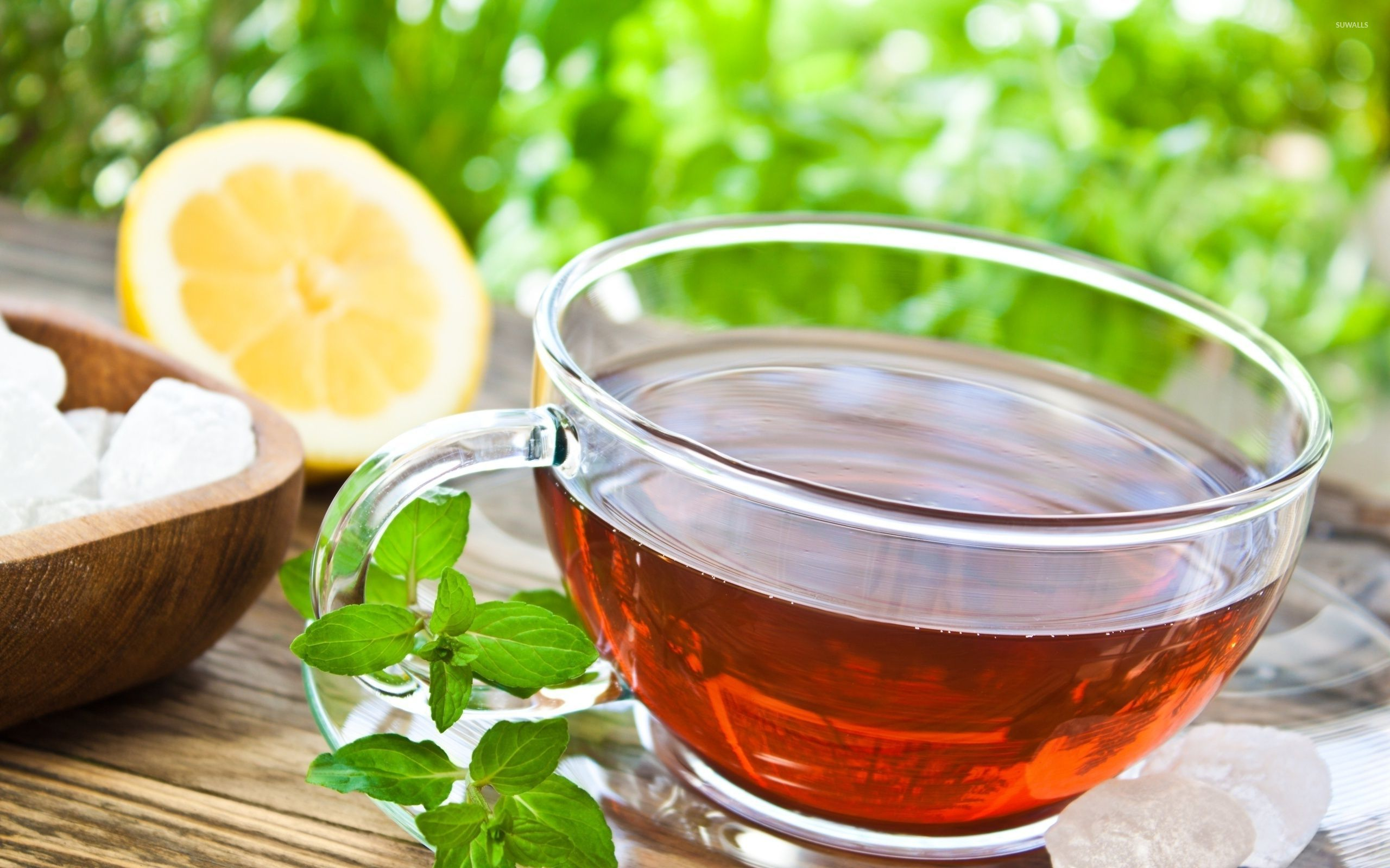 Cup of tea wallpaper   Photography wallpapers   32922 1280x800