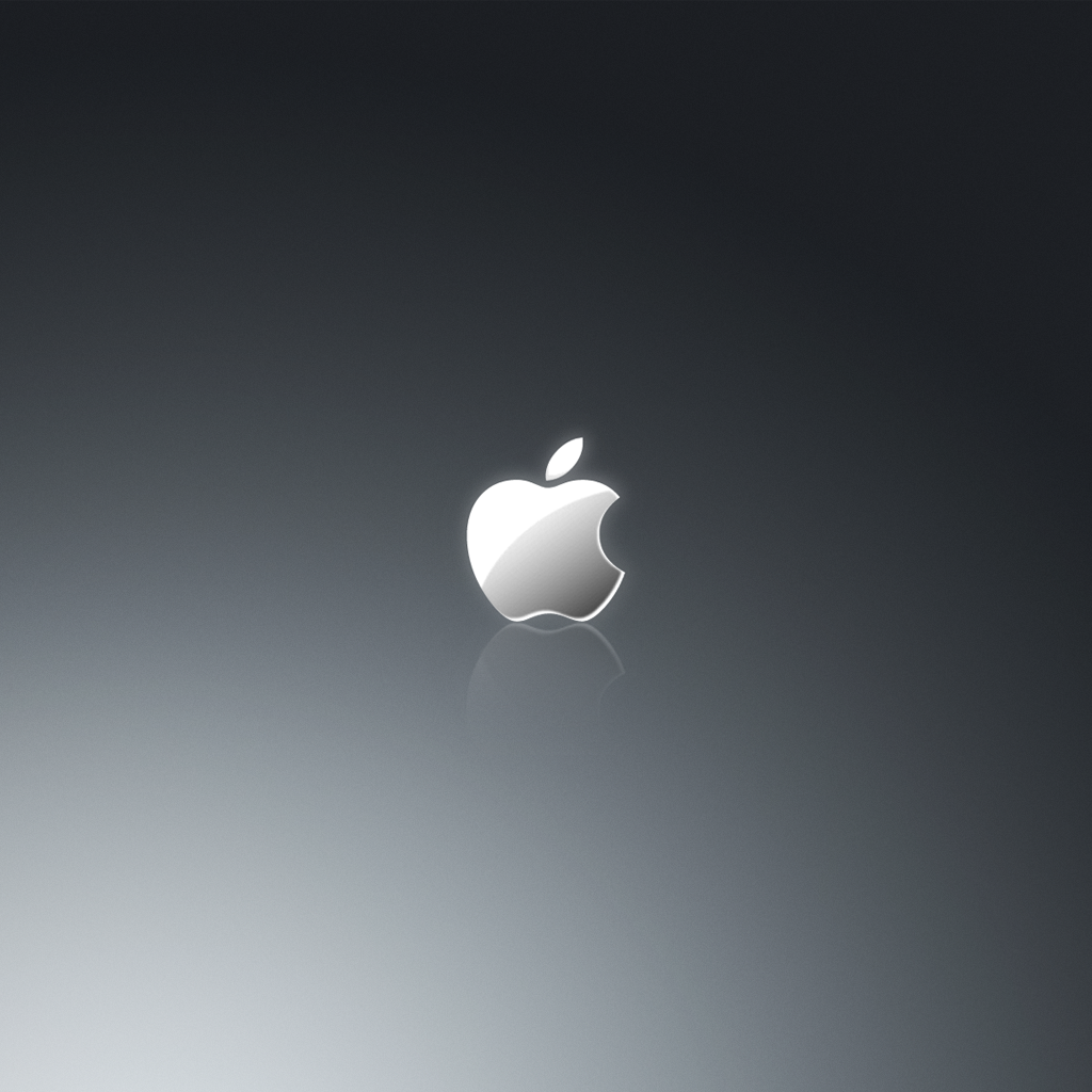 Grey Apple Logo iPad Wallpaper ipadflavacom 1024x1024