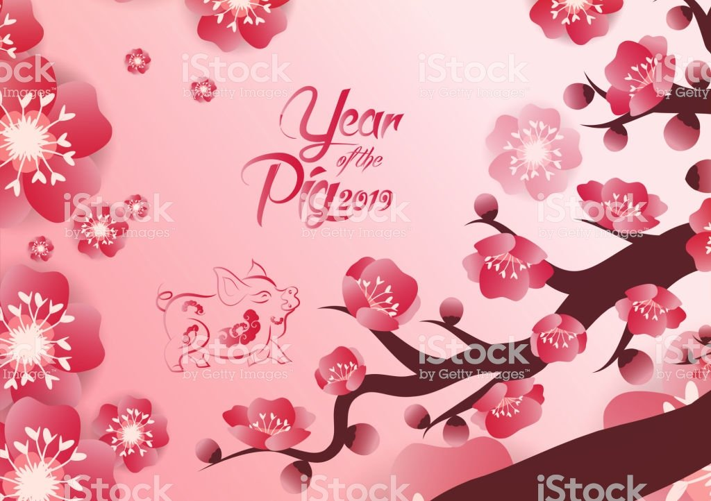 Chinese New Years 2019 Decoration For Blossom Spring Festival 1024x722