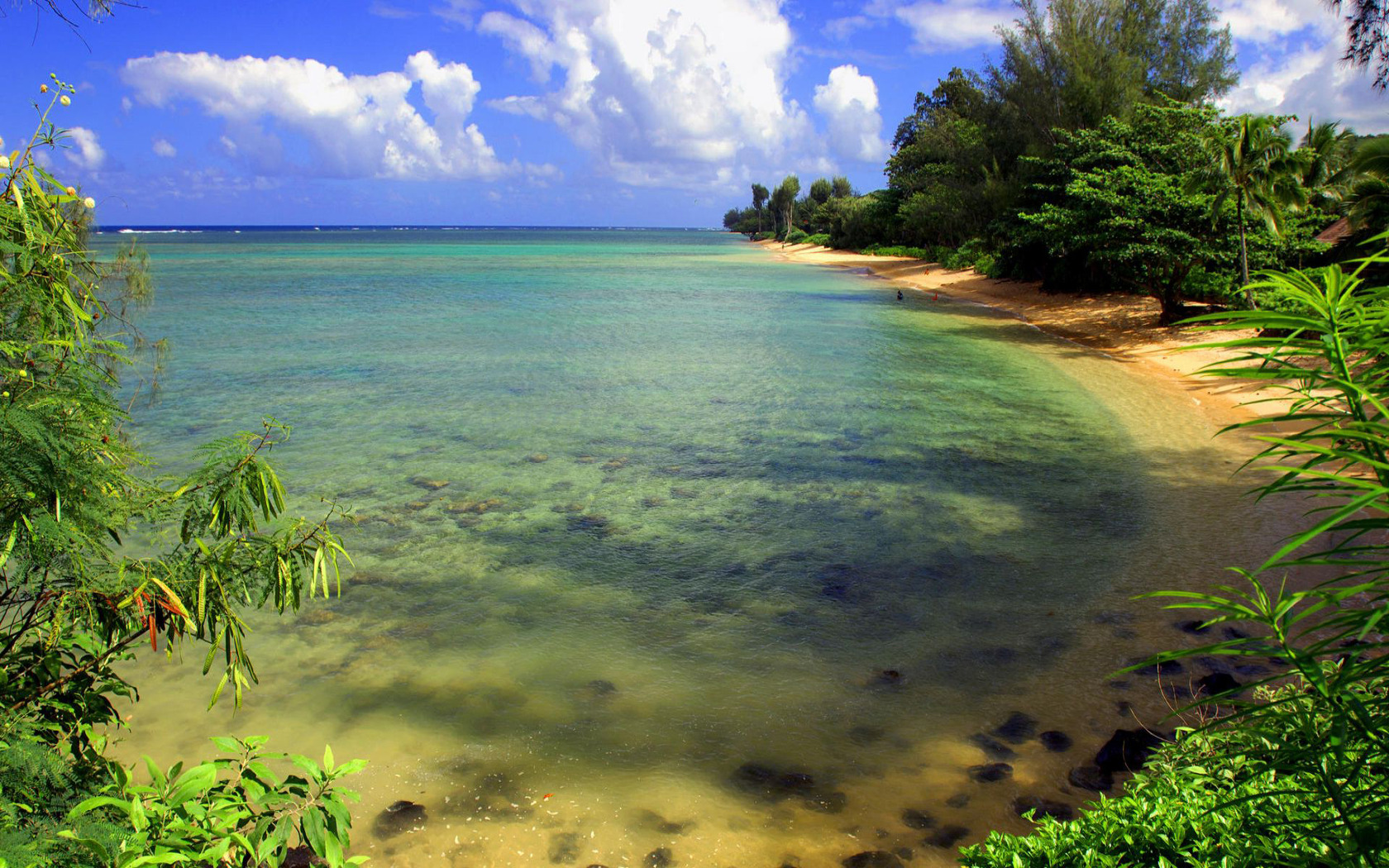 Download Tropical island beach wallpaper 1680x1050