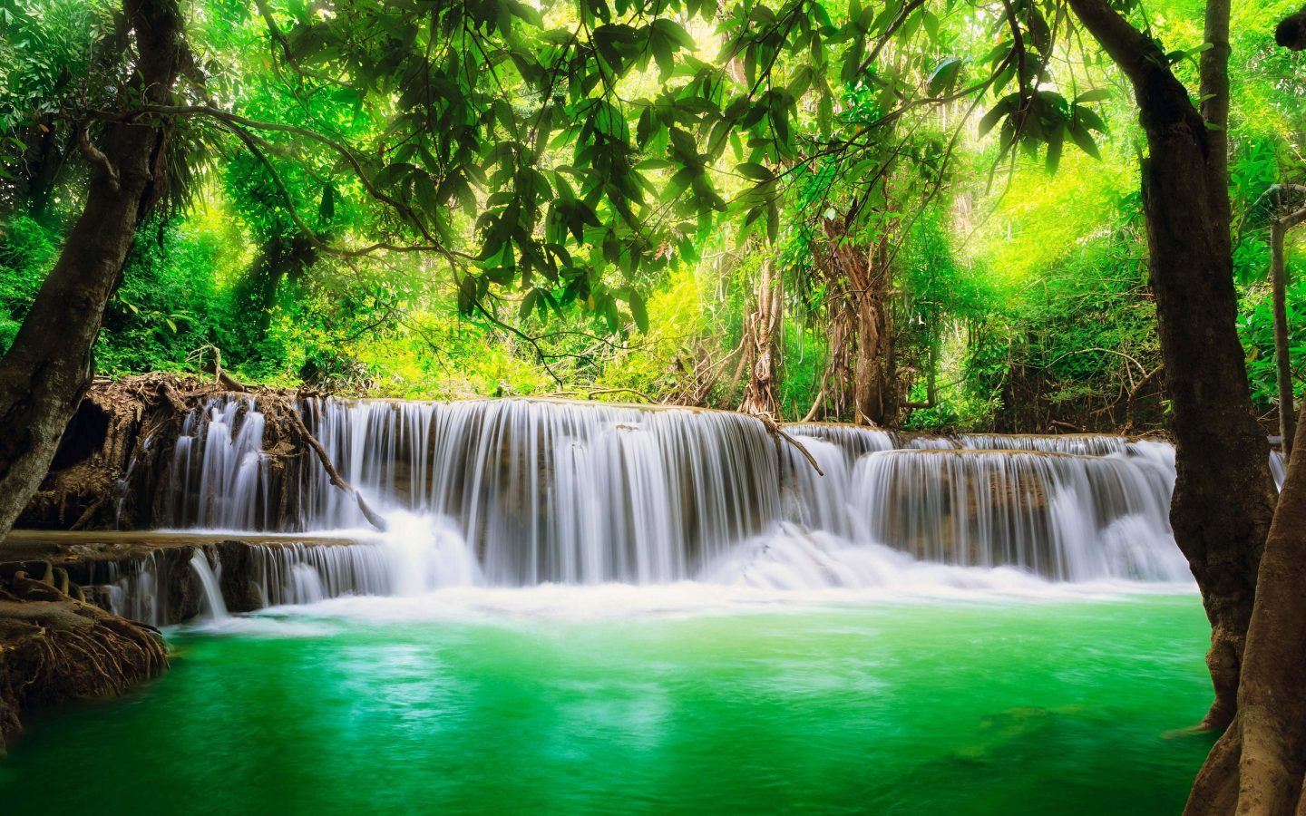 Green Tropical Waterfall Desktop Backgrounds Download 1440x900
