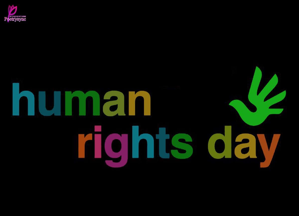 Momentos Danocas Have an unhappy Human Rights Day in 2014 Looking 1200x867