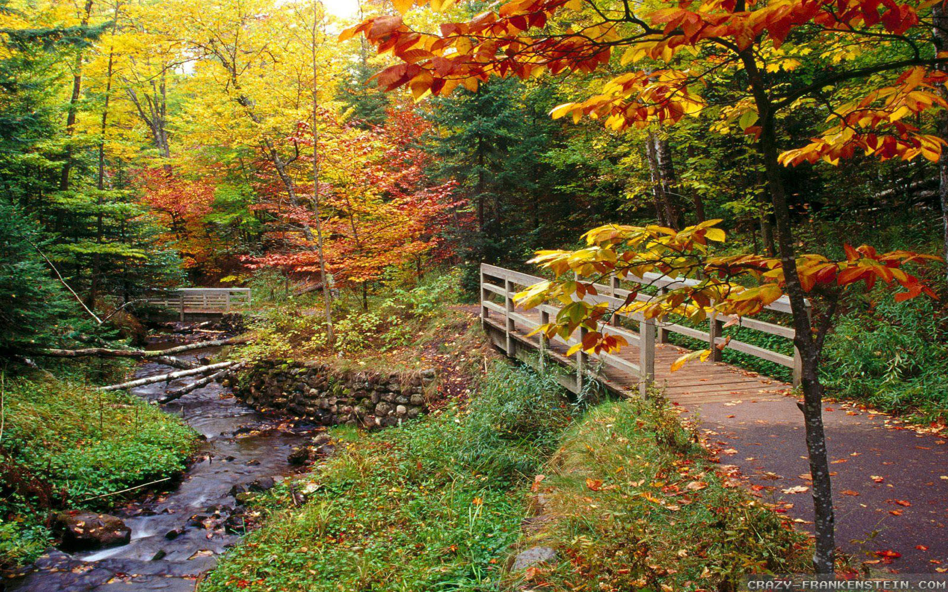 New England Fall Wallpaper 36 images 1920x1200