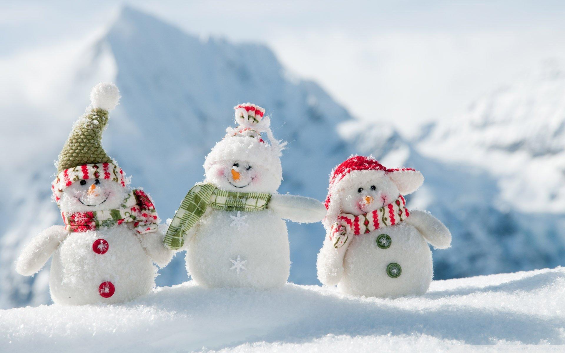 Download hd 1920x1200 Snowman desktop wallpaper ID435981 for 1920x1200