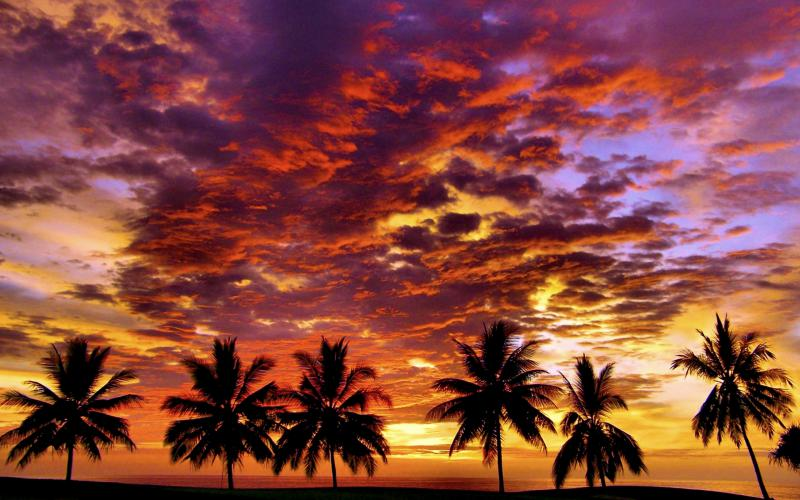 Hd Tropical Island Beach Paradise Wallpapers And Backgrounds: 800x500px Tropical Sunset Wallpaper Free