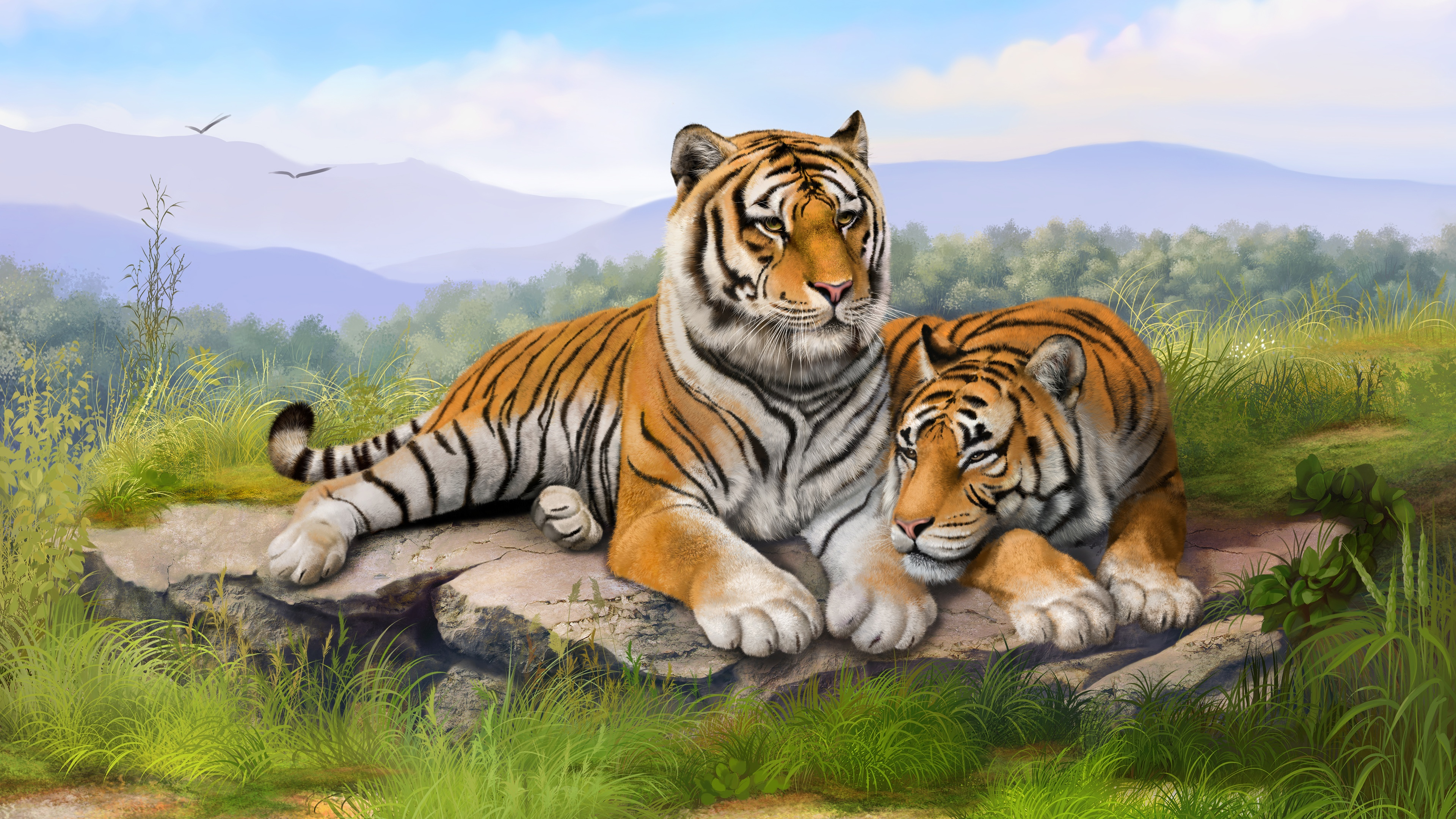Tigers Art Wallpapers HD Wallpapers 3840x2160