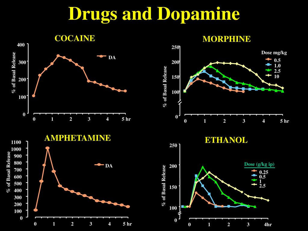 Substance Use Disorders   ppt download 1024x768