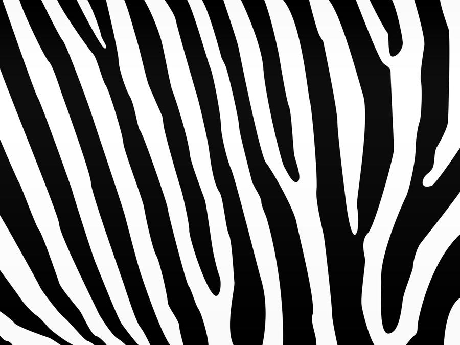 zebra print desktop wallpaper 900x675