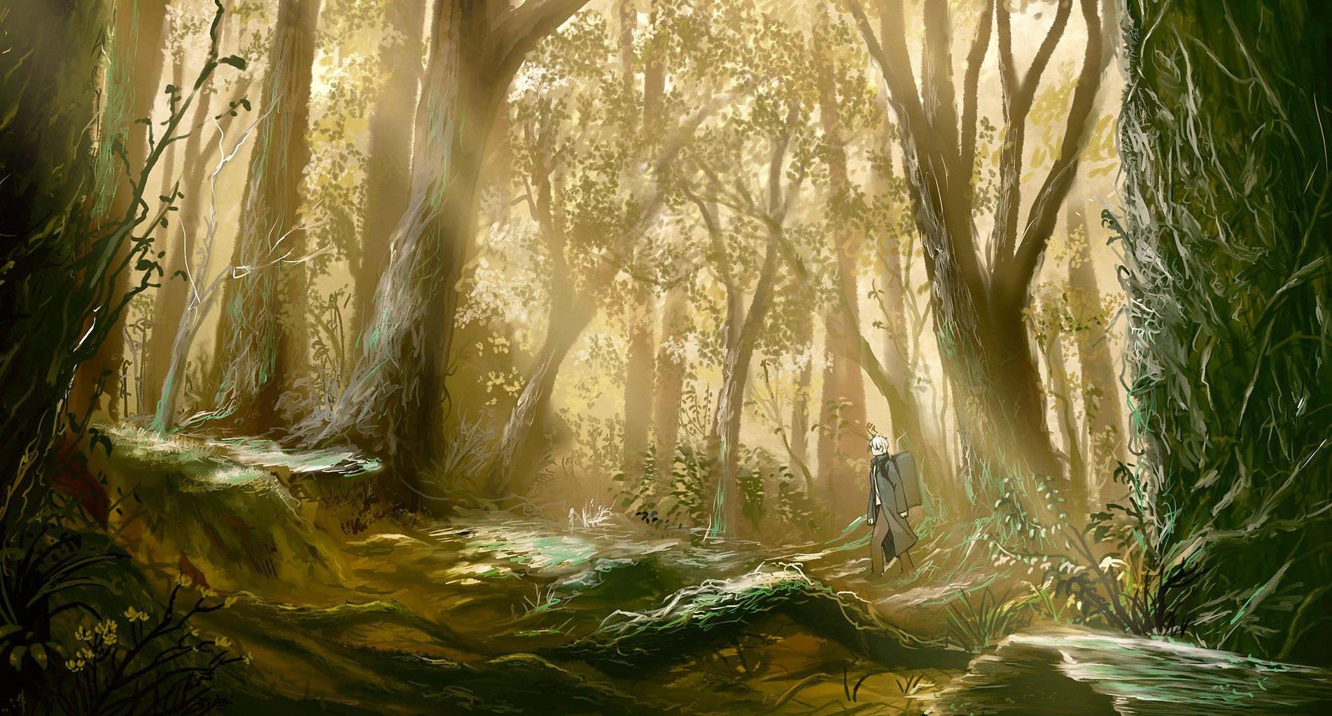 23 Anime Forest Wallpaper On Wallpapersafari