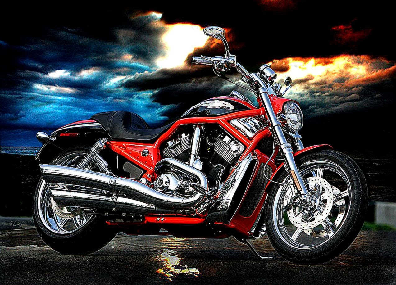 Harley Davidson Wallpaper Hd Best HD Wallpapers 1275x918