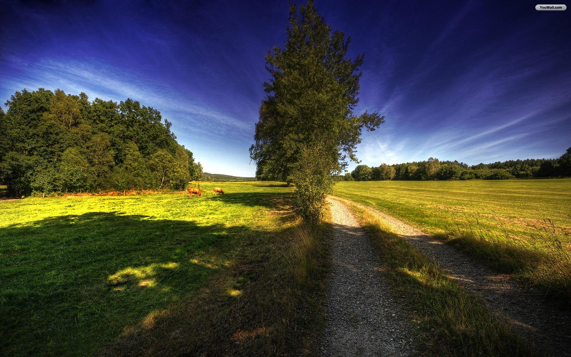 YouWall   Country Road Wallpaper   wallpaperwallpapersfree wallpaper 1920x1200