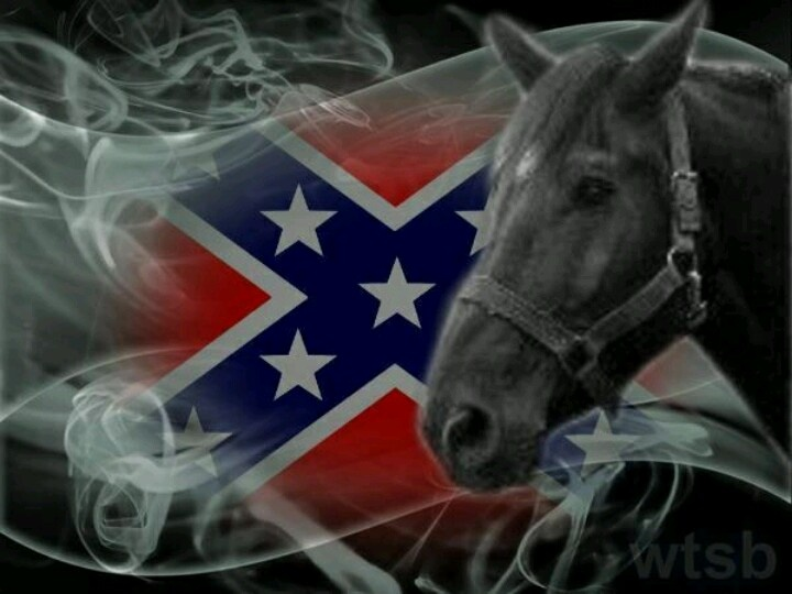 Download Browning Rebel Flag Wallpaper   Wallpaper 720x540