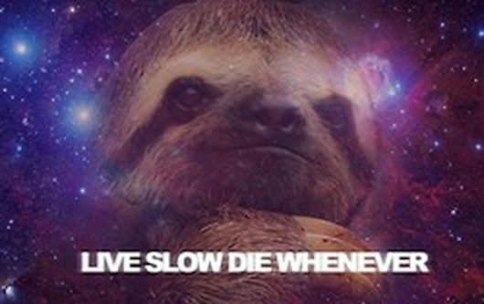 Space Sloth Sloth thats just taking life 530x333