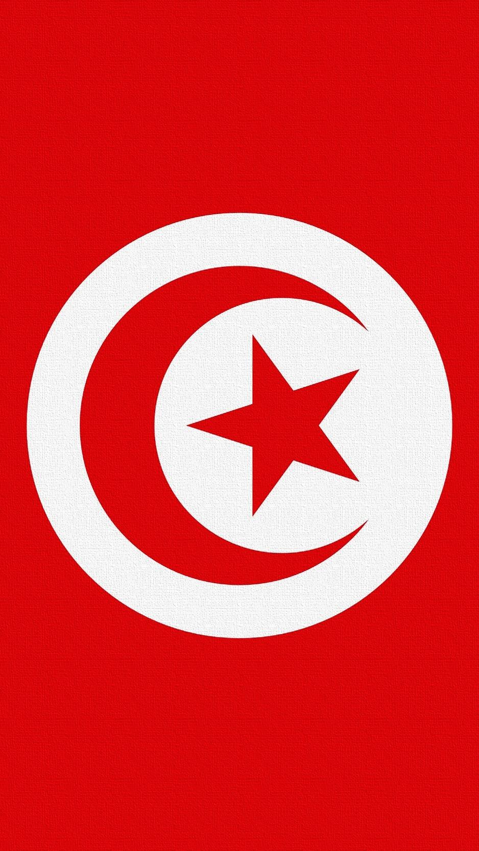 Download wallpaper 938x1668 tunisia flag star symbols iphone 8 938x1668