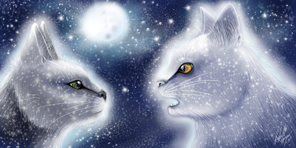 Warrior Cats Wallpaper Starclan A prophecy from starclan by 1000x500