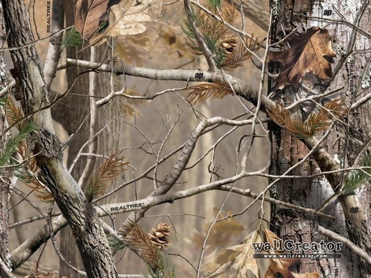 Realtree Camo Wallpaper Realtree Camo   1280 1024 Wallpaper 736x552