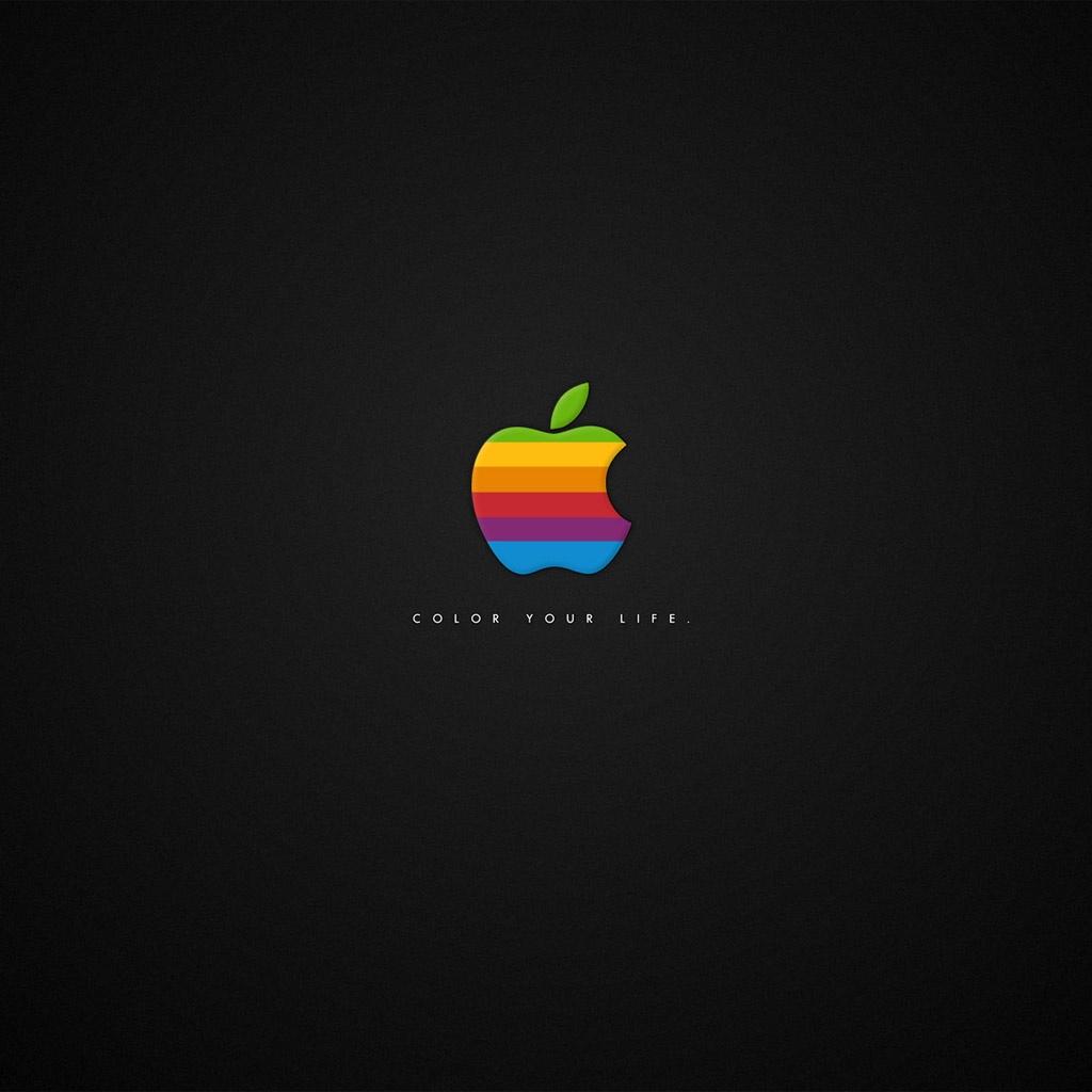 Colorful Apple Logo iPad Wallpaper Download iPhone Wallpapers iPad 1024x1024