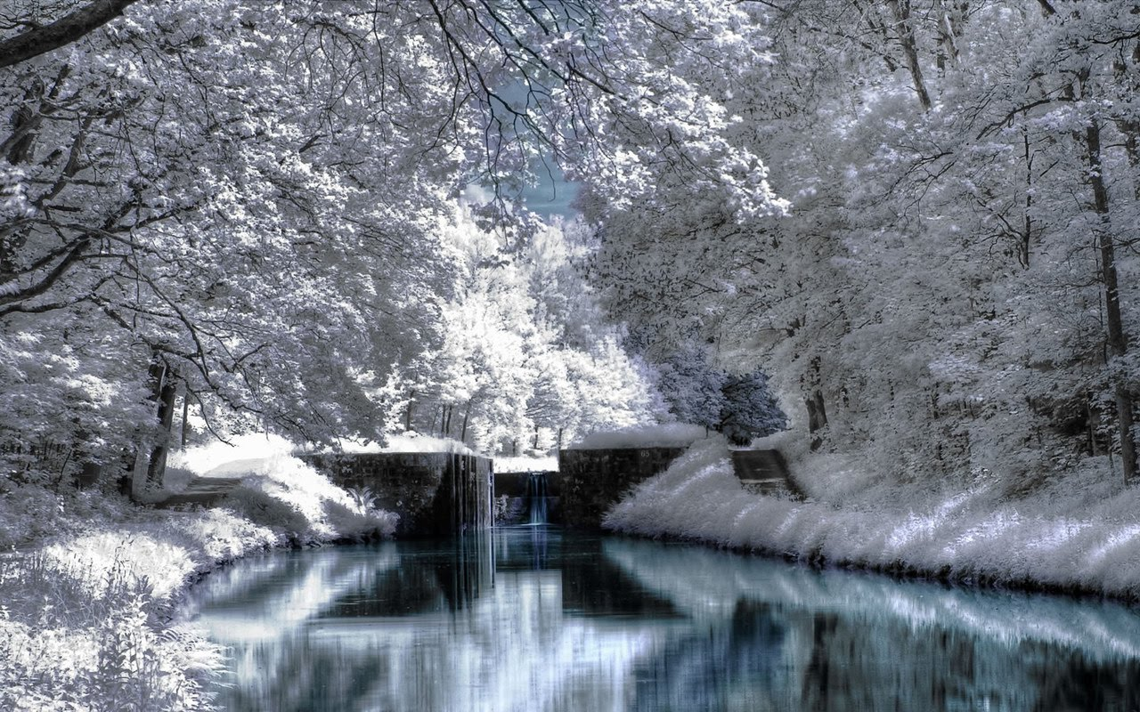 Jami Burch winter scene wallpaper 1280x800