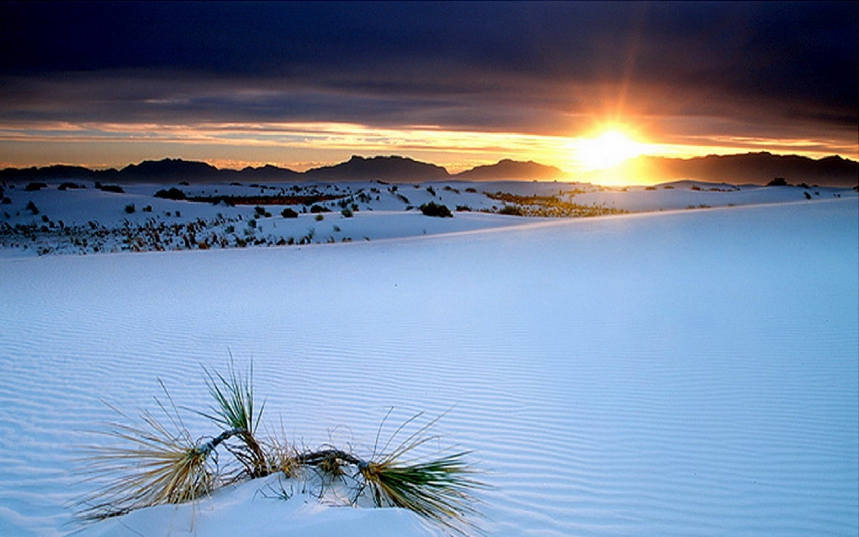 new mexico white sands national monument 1280x1024 wallpaper Wallpaper 1680x1050