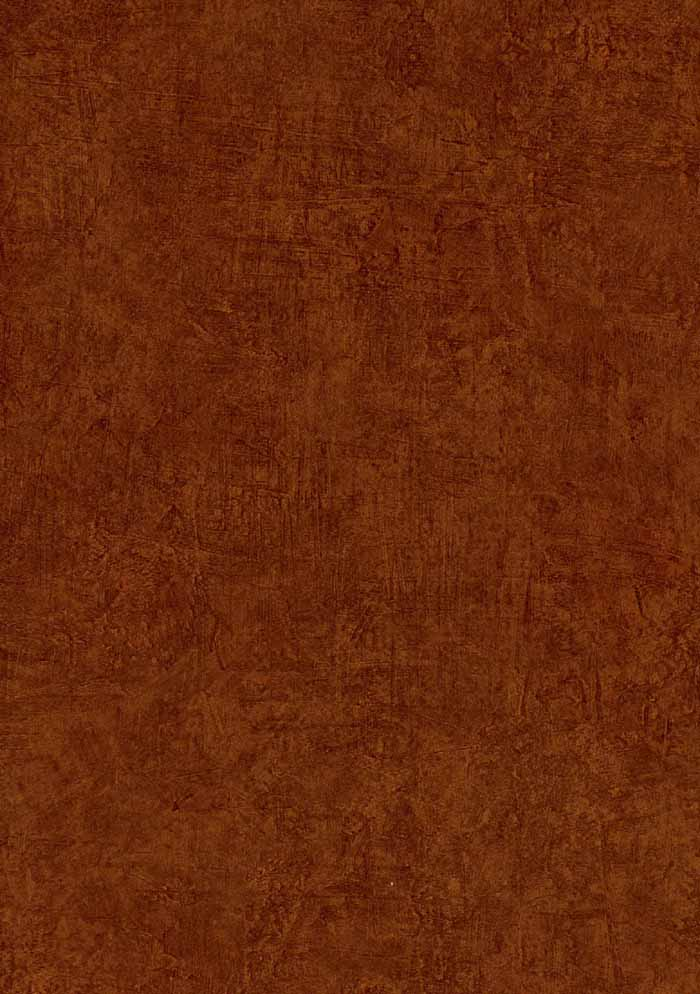 Orange Faux Wallpaper ENC4071   Wallpaper Border Wallpaper inccom 700x994