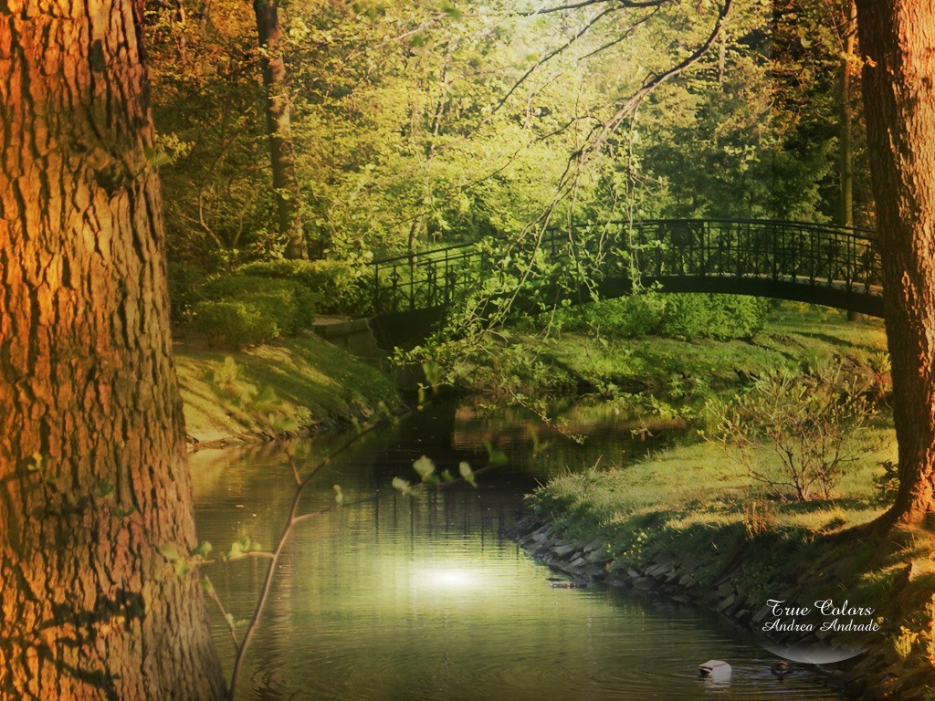 PS Landscape20 Wallpaper Resolution1024x768 56views Image Size319 1024x768