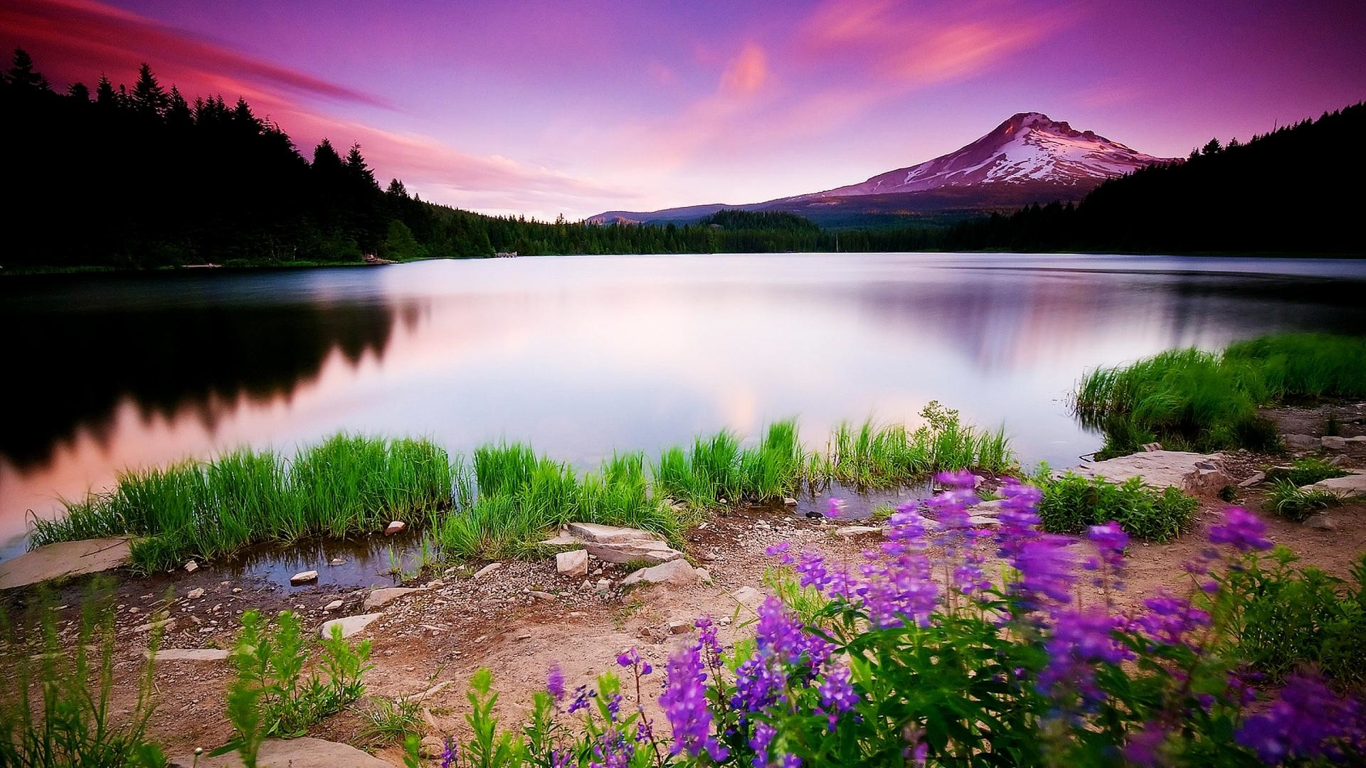 Colorful Nature HD Wallpapers Pictures One HD Wallpaper 1920x1080