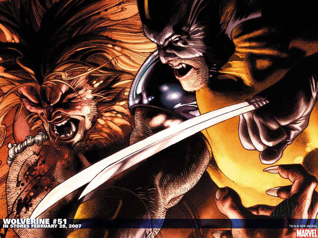Wolverine   X Men Origins Wolverine Wallpaper 2491702 1024x768