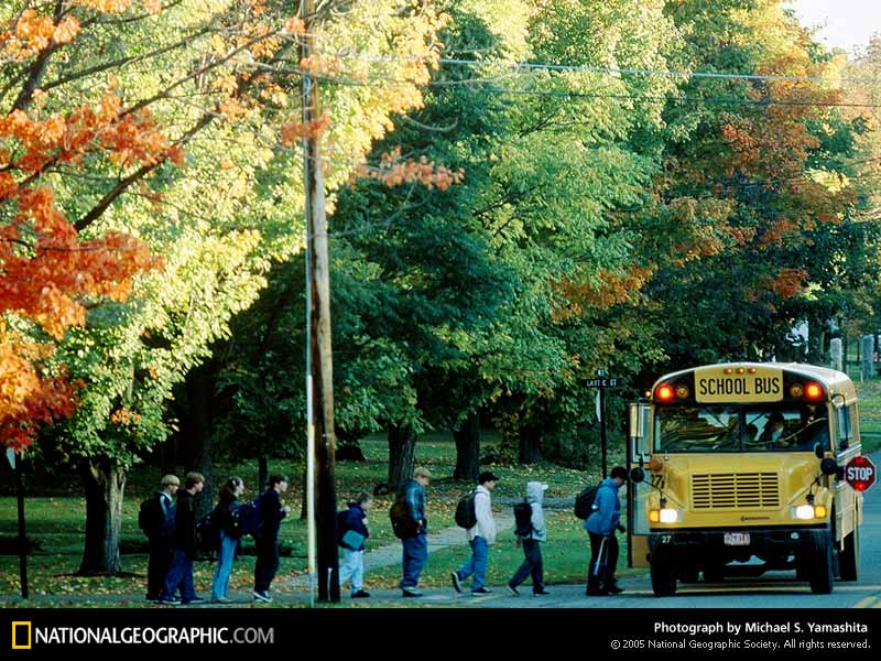 School Bus 1997 Photo of the Day Picture Photography Wallpapers 800x600