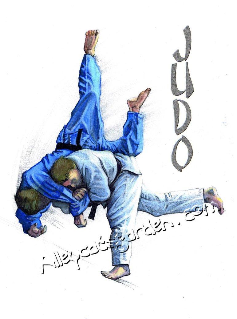 Judo Throw Wallpaper Judo by alleycatsgarden 771x1036