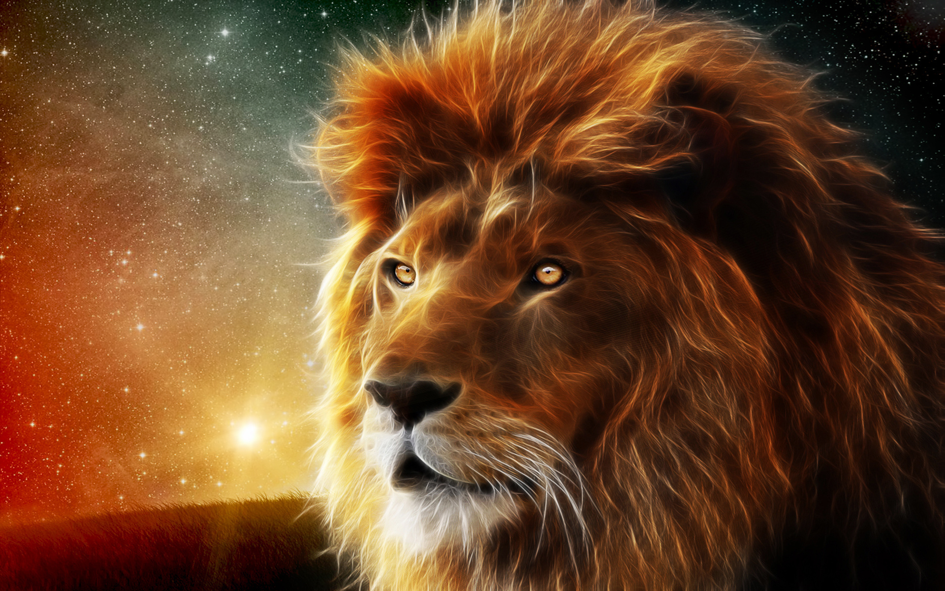 133336d1363857816 lion wallpapers lion pics 1920 x 1200jpg 1920x1200
