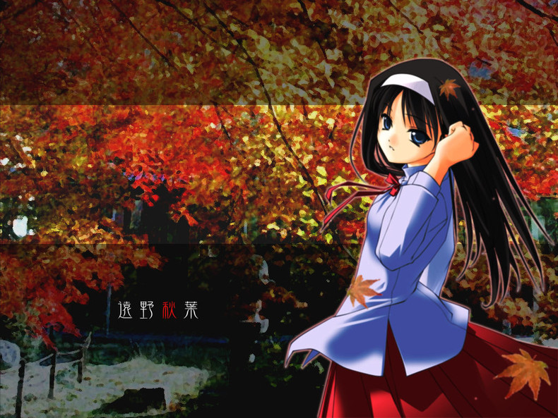 Home Gallery Anime Girls Wallpapers Autumn 790x593