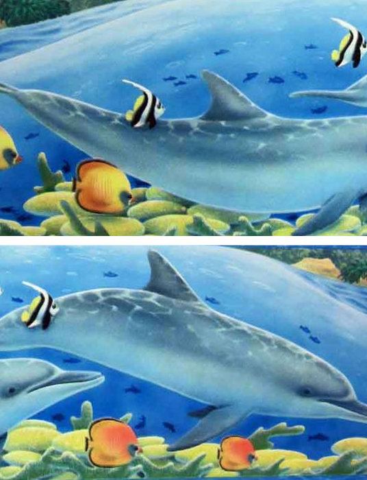 Childrens Rooms Under The Sea Dolphin Wallpaper Border 536x700