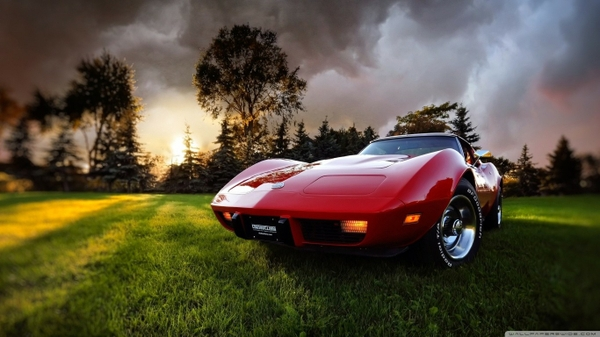 Category Cars Subcategory Chevrolet Hd Wallpapers Tags grass old 600x337
