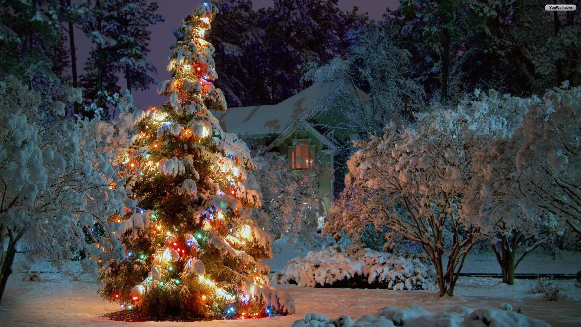 Winter Christmas Wallpaper Images at Landscape Monodomo 1920x1080
